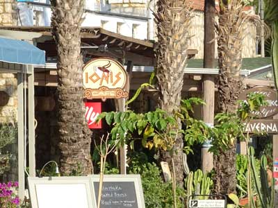 palm trees in front of Ionis cafe